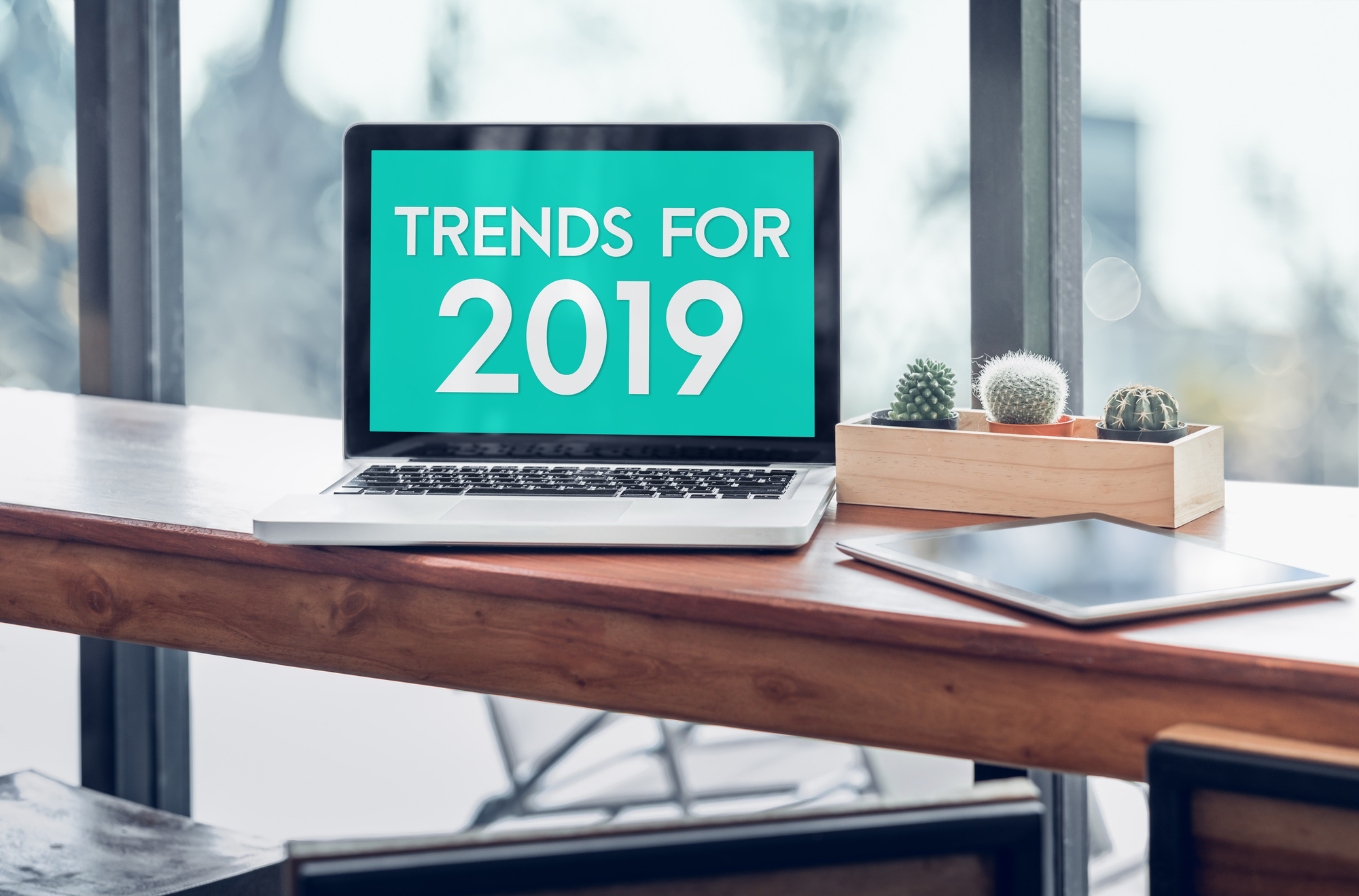 5 Web Design Trends to Gear Up for in 2019